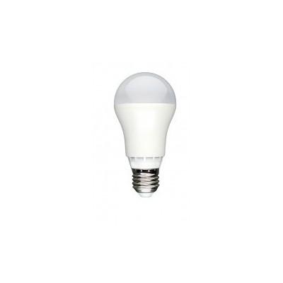 Żarówka LED E27 13W GLS